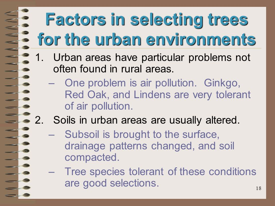 18 Factors in selecting trees for the urban environments 1.Urban areas have particular problems not often found in rural areas.
