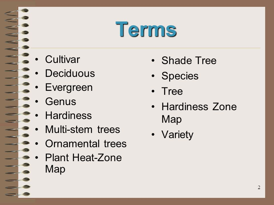 2 Terms Cultivar Deciduous Evergreen Genus Hardiness Multi-stem trees Ornamental trees Plant Heat-Zone Map Shade Tree Species Tree Hardiness Zone Map Variety