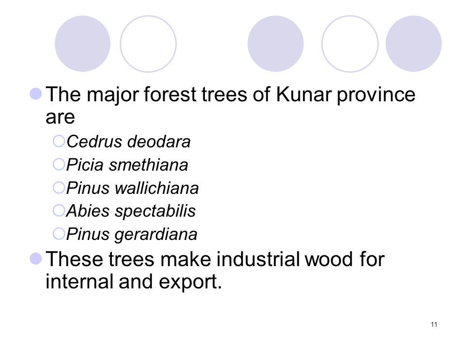 11 The major forest trees of Kunar province are Cedrus deodara Picia smethiana Pinus wallichiana Abies spectabilis Pinus gerardiana These trees make i