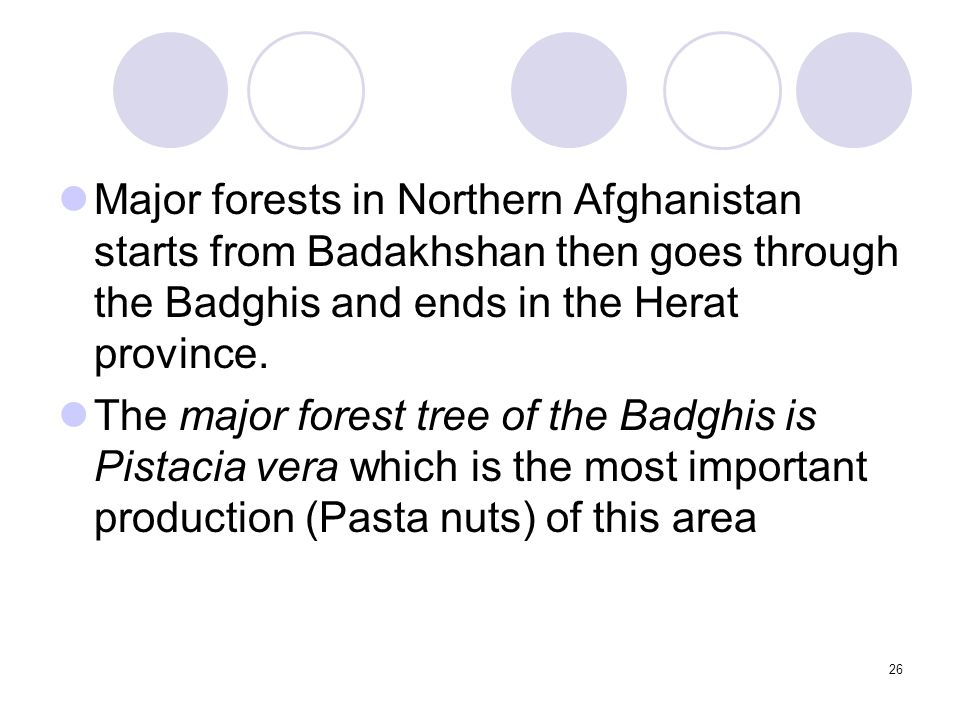26 Major forests in Northern Afghanistan starts from Badakhshan then goes through the Badghis and ends in the Herat province. The major forest tree of