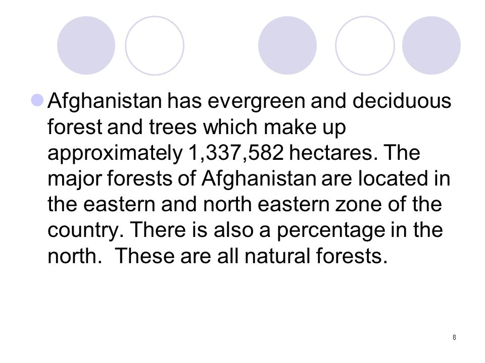8 Afghanistan has evergreen and deciduous forest and trees which make up approximately 1,337,582 hectares.