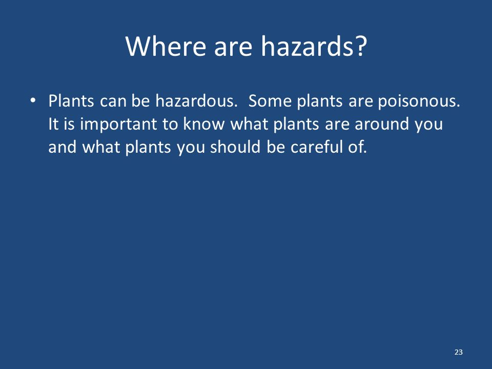 23 Where are hazards. Plants can be hazardous. Some plants are poisonous.