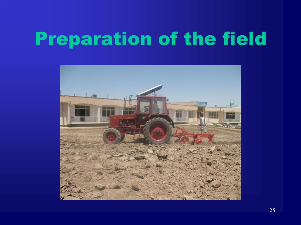 25 Preparation of the field