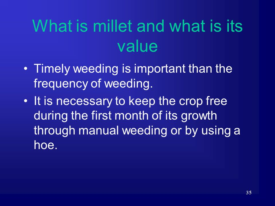 35 Timely weeding is important than the frequency of weeding. It is necessary to keep the crop free during the first month of its growth through manua