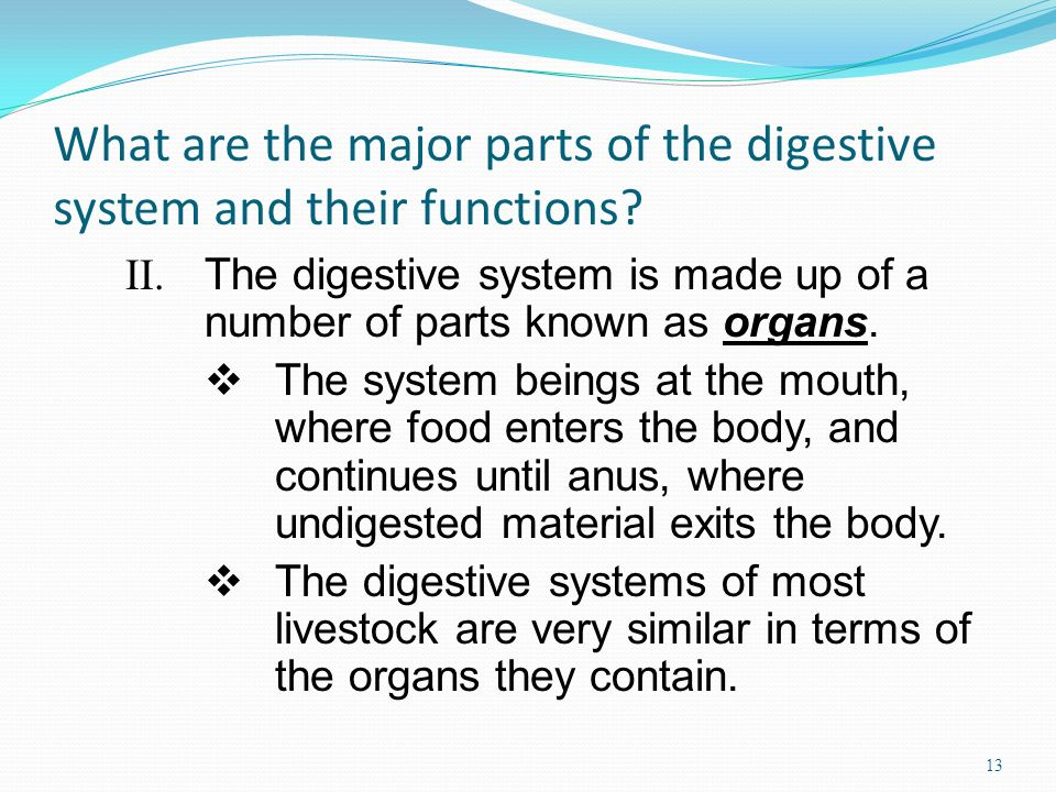 What are the major parts of the digestive system and their functions? II. The digestive system is made up of a number of parts known as organs. The sy