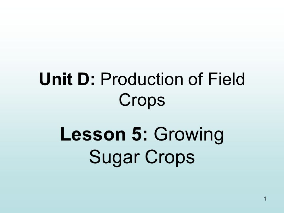 1 Unit D: Production of Field Crops Lesson 5: Growing Sugar Crops