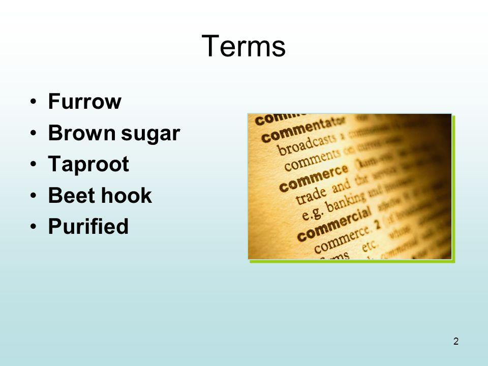 2 Terms Furrow Brown sugar Taproot Beet hook Purified
