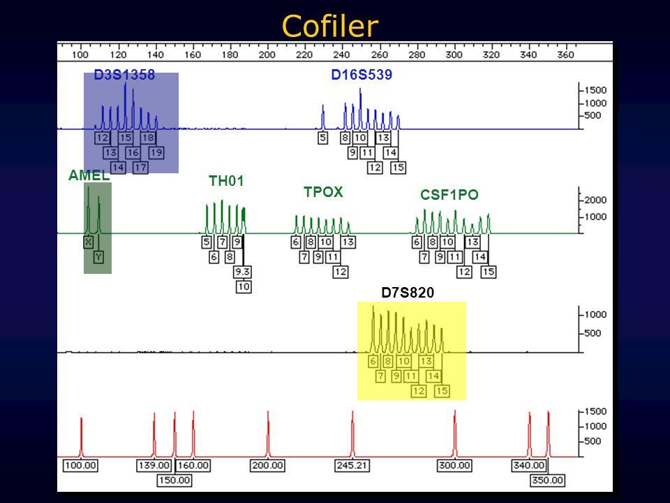 D3S1358 AMEL D7S820 D16S539 TH01 TPOX CSF1PO Cofiler