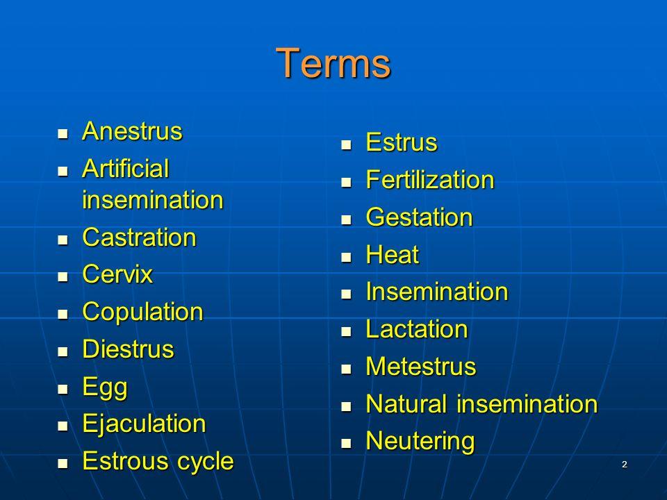 2 Terms Anestrus Anestrus Artificial insemination Artificial insemination Castration Castration Cervix Cervix Copulation Copulation Diestrus Diestrus
