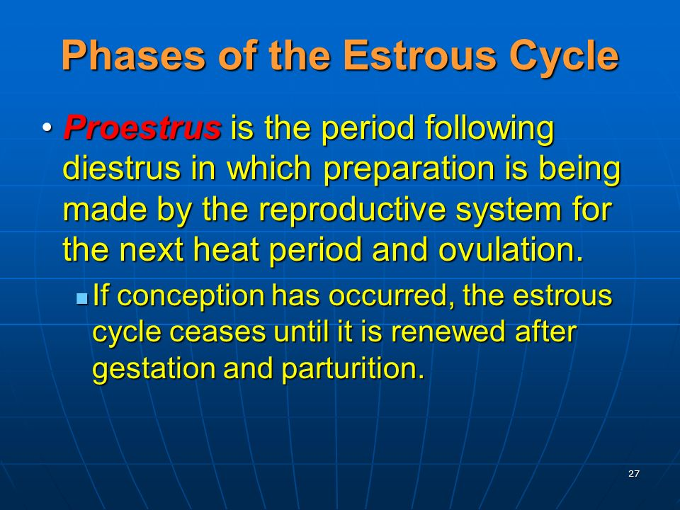 27 Phases of the Estrous Cycle Proestrus is the period following diestrus in which preparation is being made by the reproductive system for the next h