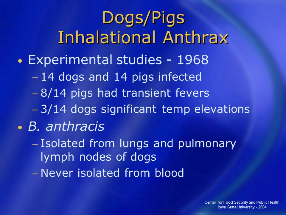 Center for Food Security and Public Health Iowa State University - 2004 Dogs/Pigs Inhalational Anthrax Experimental studies - 1968 14 dogs and 14 pigs