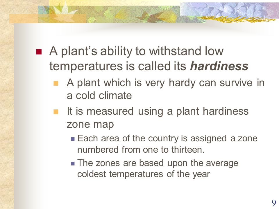 9 A plants ability to withstand low temperatures is called its hardiness A plant which is very hardy can survive in a cold climate It is measured usin