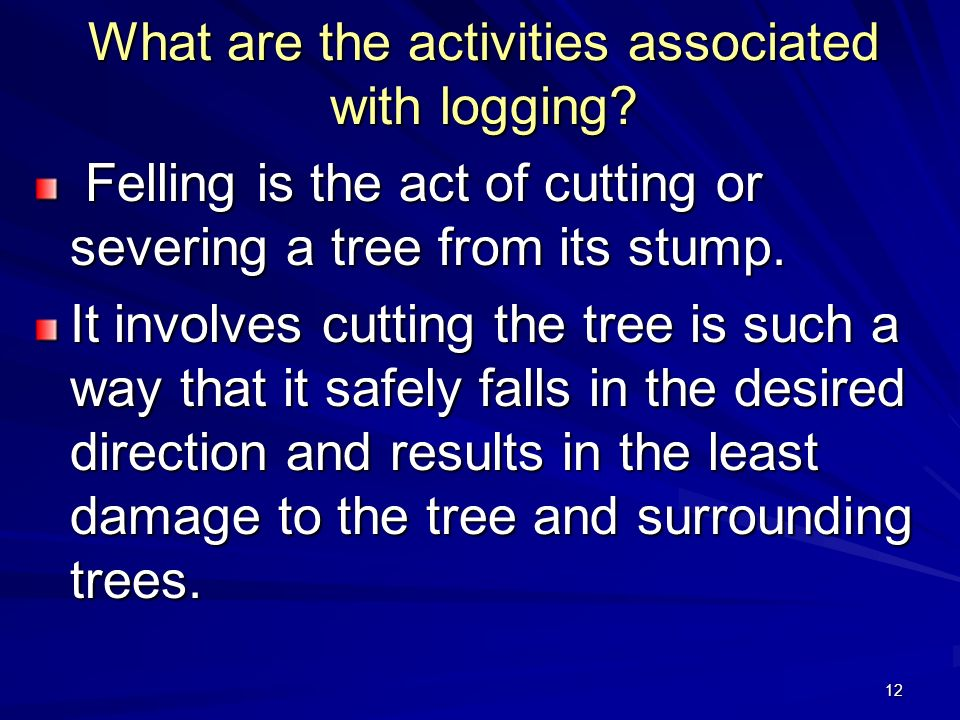 12 What are the activities associated with logging.