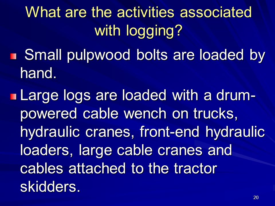 20 What are the activities associated with logging.