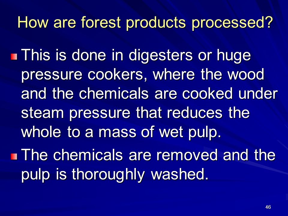 46 How are forest products processed.