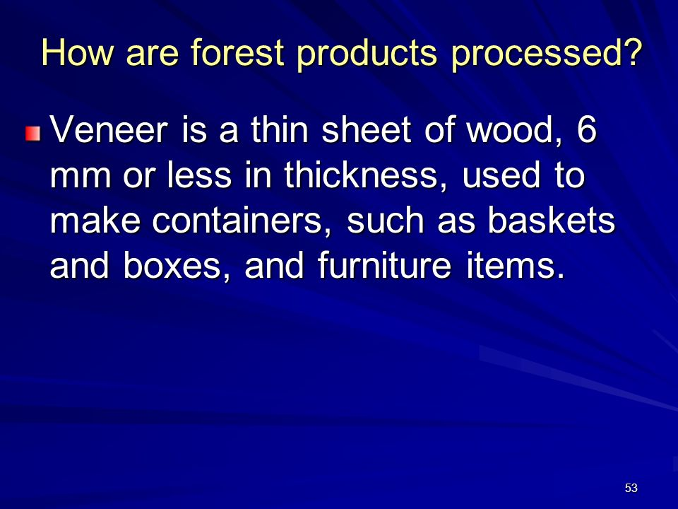 53 How are forest products processed.