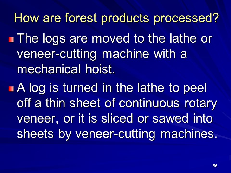 56 How are forest products processed.
