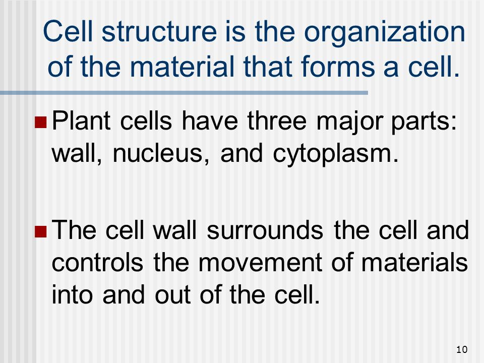 10 Cell structure is the organization of the material that forms a cell. Plant cells have three major parts: wall, nucleus, and cytoplasm. The cell wa