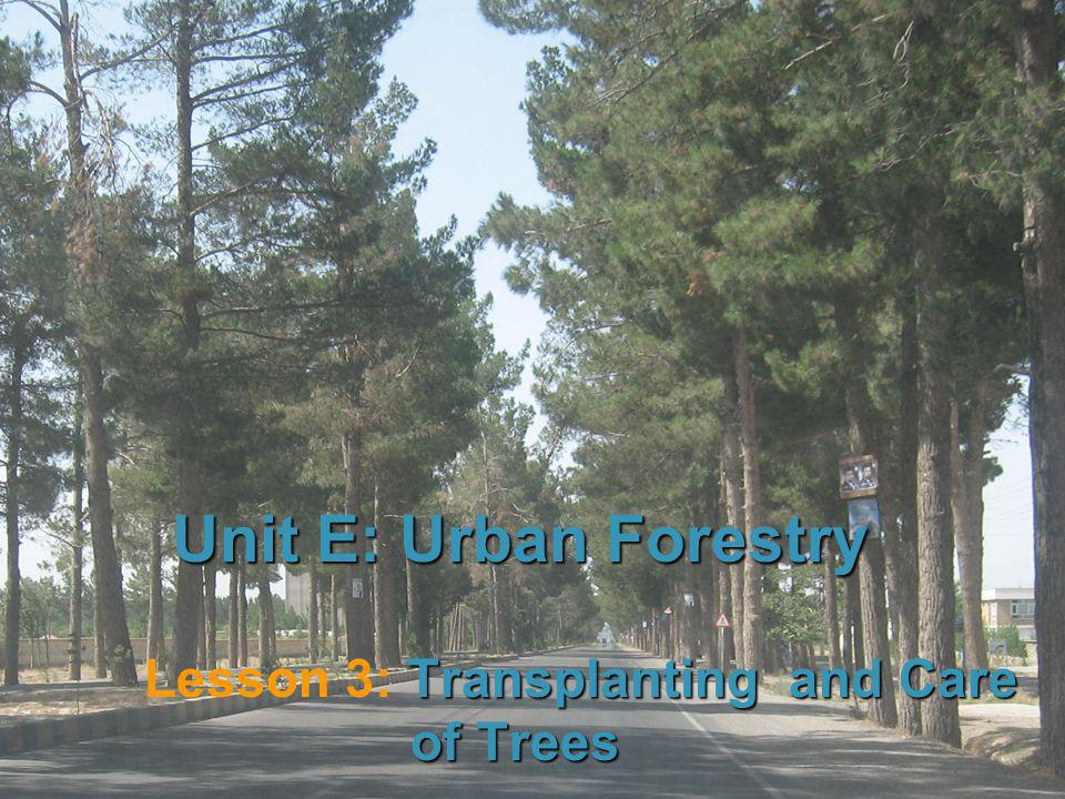 1 Unit E: Urban Forestry Transplanting and Care of Trees Lesson 3: Transplanting and Care of Trees