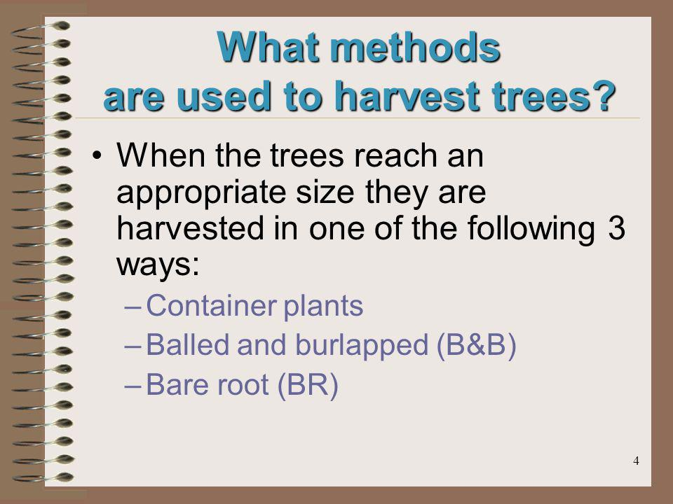 4 What methods are used to harvest trees? When the trees reach an appropriate size they are harvested in one of the following 3 ways: –Container plant