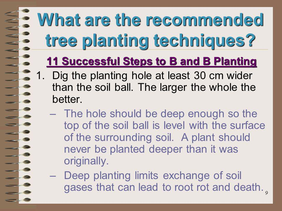 9 What are the recommended tree planting techniques.