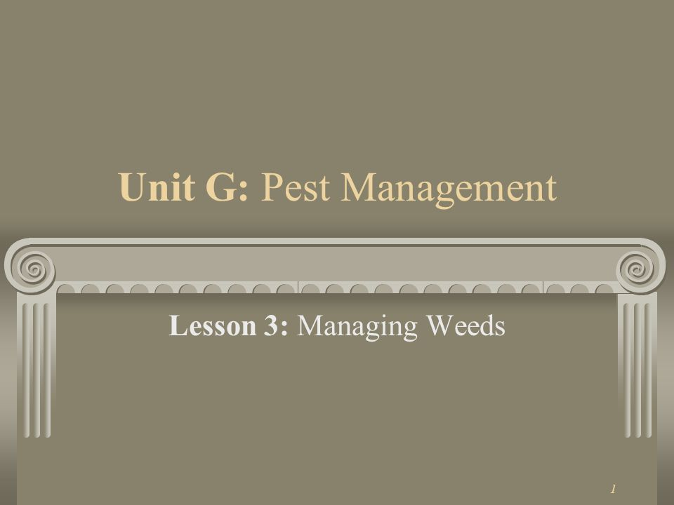 1 Unit G: Pest Management Lesson 3: Managing Weeds