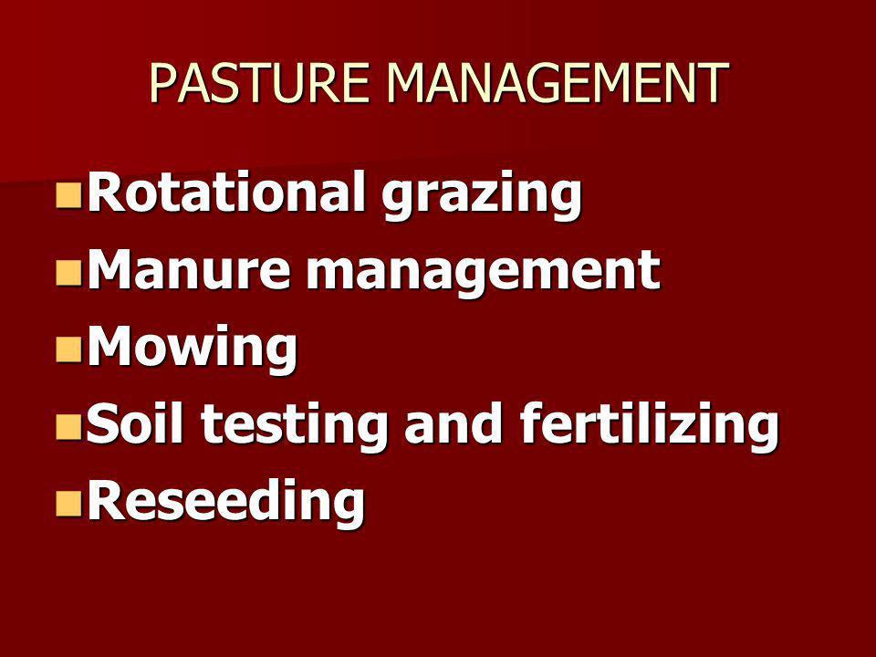 FEEDING MANAGEMENT GUIDELINES Properly manage group-fed horses.