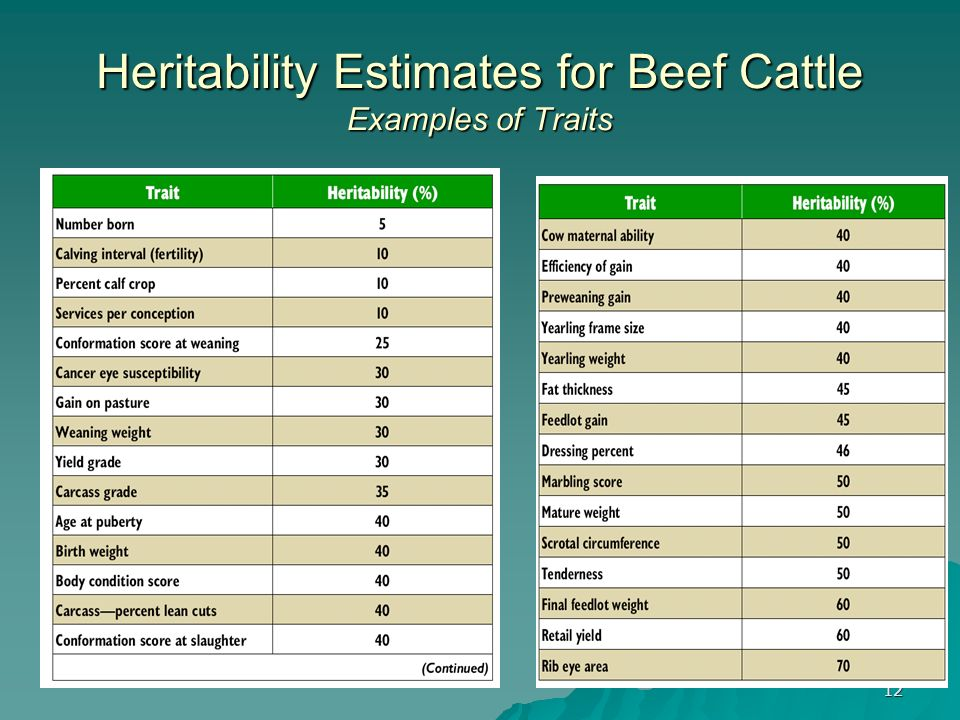 12 Heritability Estimates for Beef Cattle Examples of Traits