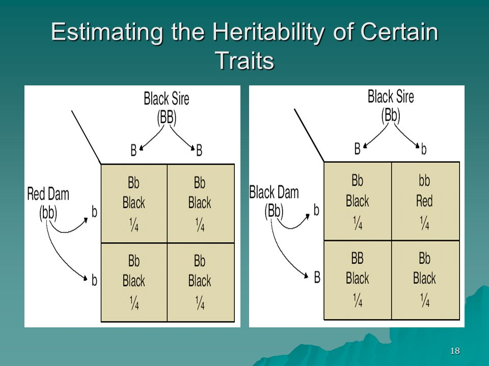 18 Estimating the Heritability of Certain Traits