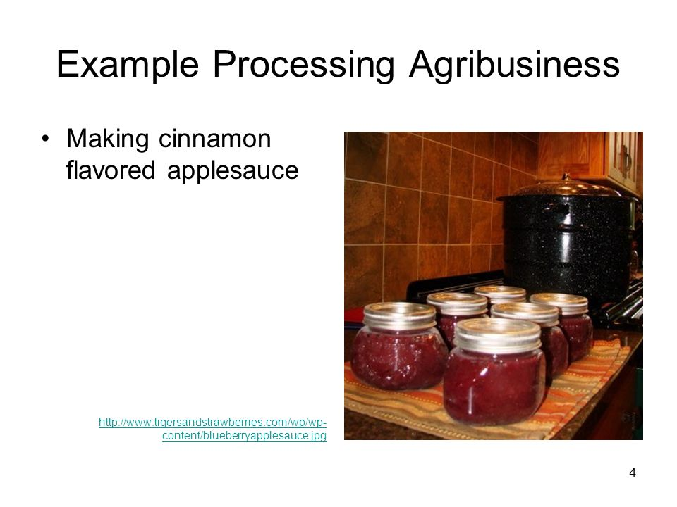 Example Processing Agribusiness Making cinnamon flavored applesauce http://www.tigersandstrawberries.com/wp/wp- content/blueberryapplesauce.jpg 4