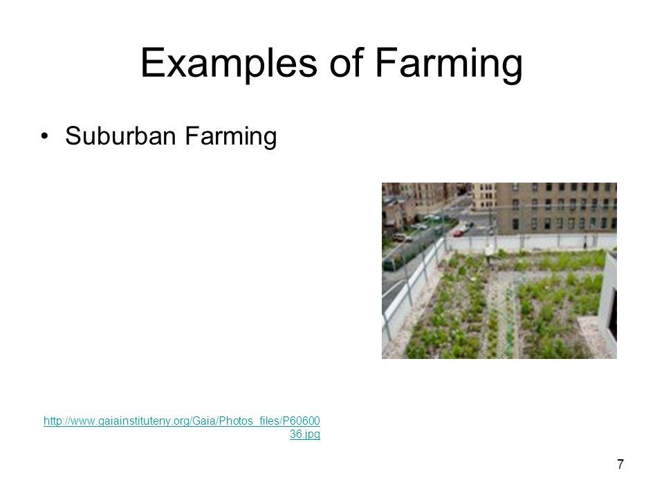 Examples of Farming Suburban Farming http://www.gaiainstituteny.org/Gaia/Photos_files/P60600 36.jpg 7