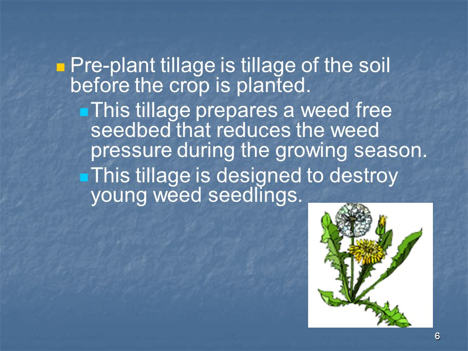 6 Pre-plant tillage is tillage of the soil before the crop is planted. This tillage prepares a weed free seedbed that reduces the weed pressure during