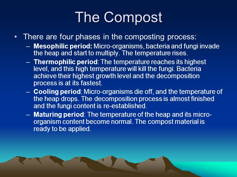 There are four phases in the composting process: –Mesophilic period: Micro-organisms, bacteria and fungi invade the heap and start to multiply.