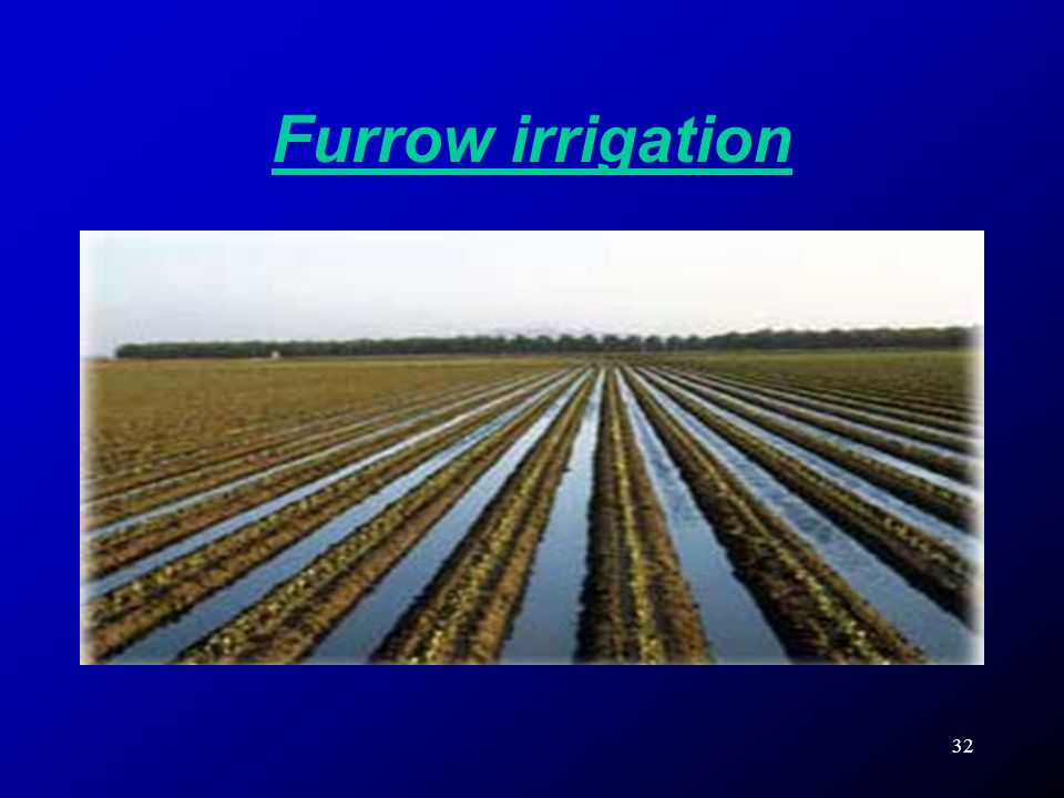 32 Furrow irrigation
