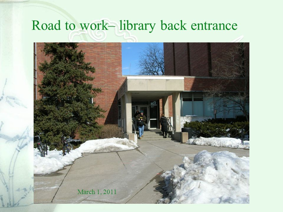 Road to work– library back entrance March 1, 2011