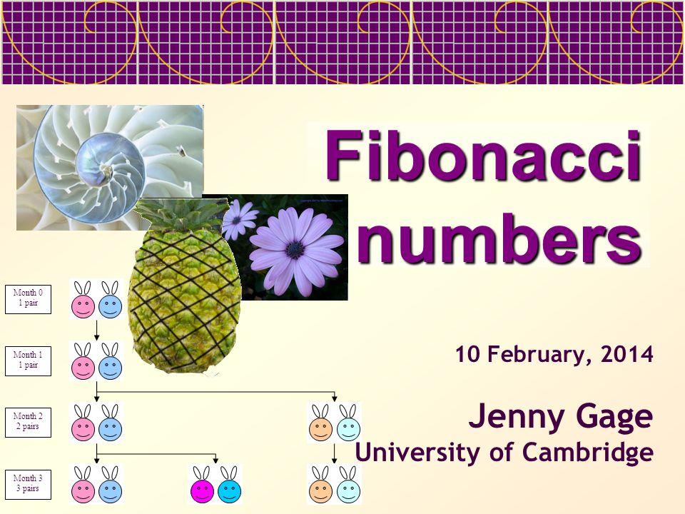 Fibonacci numbers Month 0 1 pair Month 1 1 pair Month 2 2 pairs Month 3 3 pairs 10 February, 2014 Jenny Gage University of Cambridge