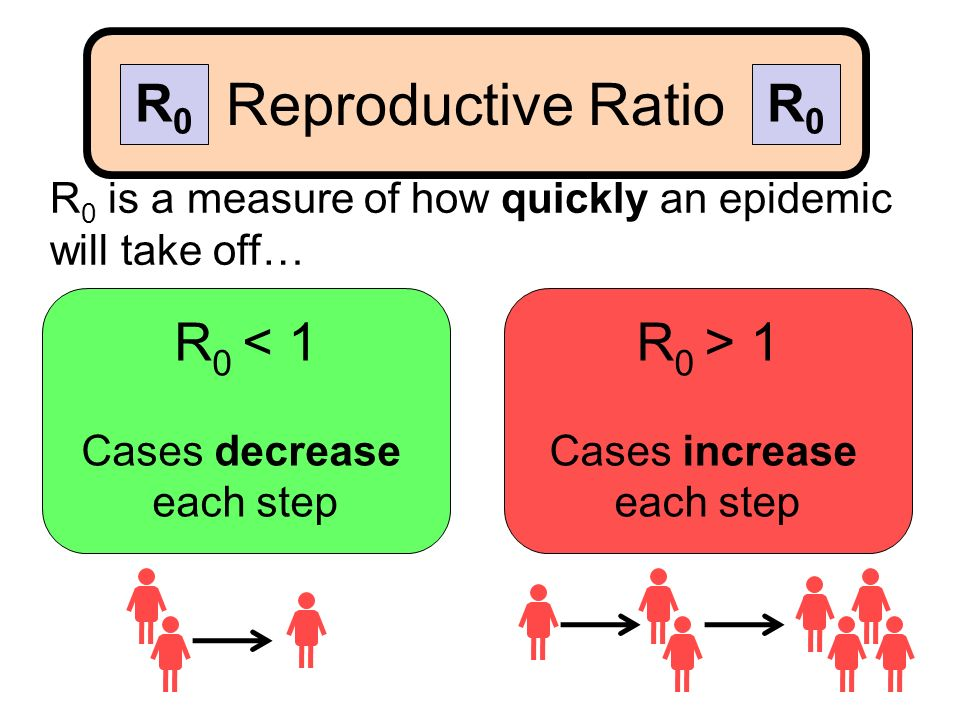 R 0 is a measure of how quickly an epidemic will take off… R 0 < 1 Cases decrease each step R 0 > 1 Cases increase each step Reproductive Ratio R0R0 R