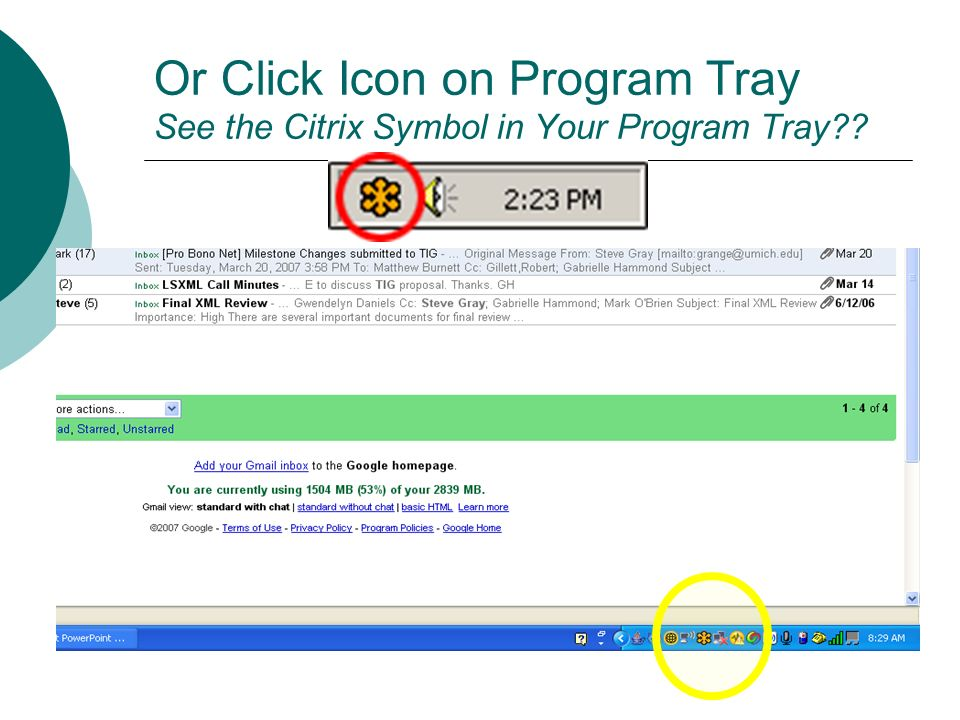 Or Click Icon on Program Tray See the Citrix Symbol in Your Program Tray??