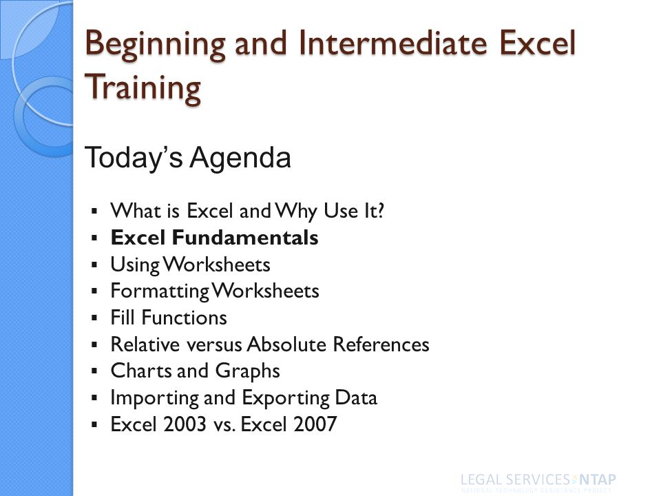 Excel Fundamentals Using Worksheets Formatting Worksheets Fill Functions Relative versus Absolute References Charts and Graphs Importing and Exporting Data Excel 2003 vs.