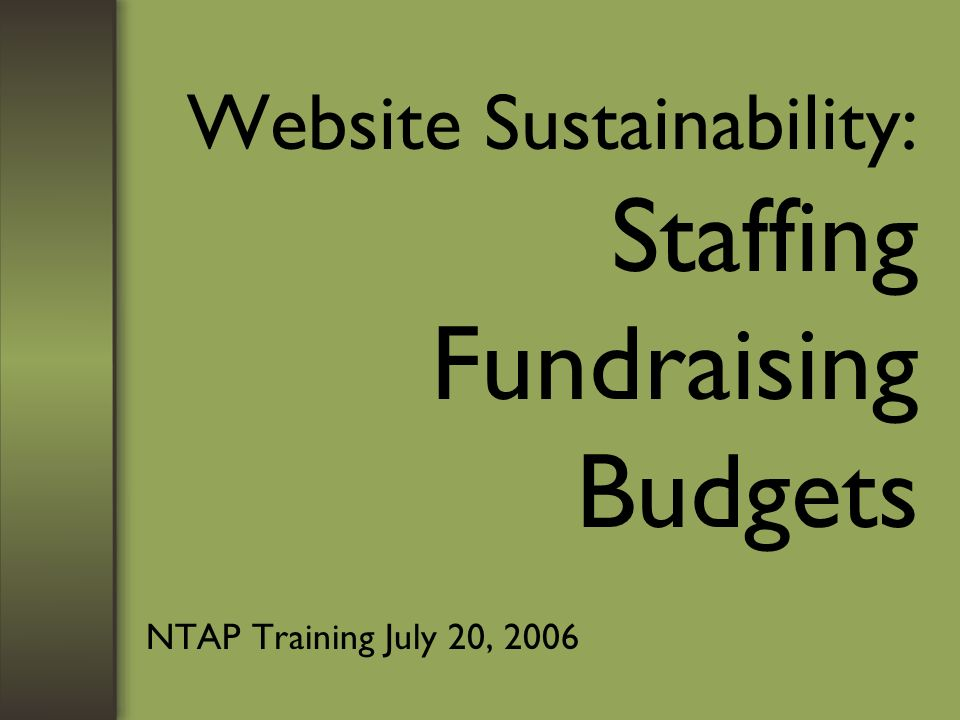 Website Sustainability: Staffing Fundraising Budgets NTAP Training July 20, 2006