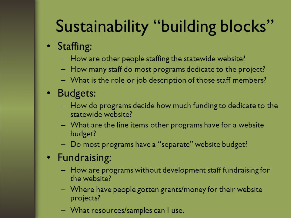 Sustainability building blocks Staffing: –How are other people staffing the statewide website.