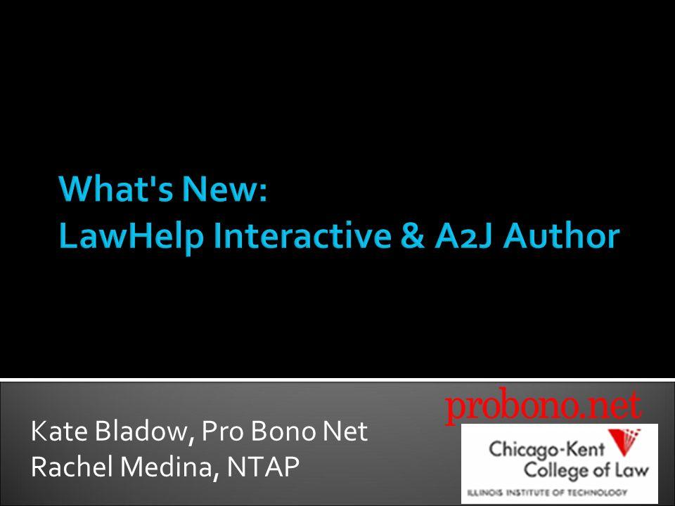 Kate Bladow, Pro Bono Net Rachel Medina, NTAP