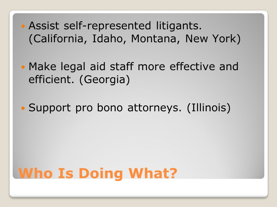 Who Is Doing What? Assist self-represented litigants. (California, Idaho, Montana, New York) Make legal aid staff more effective and efficient. (Georg