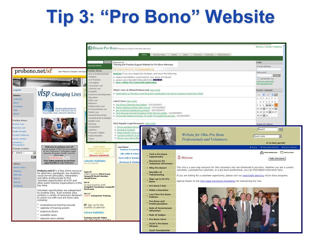 Tip 3: Pro Bono Website