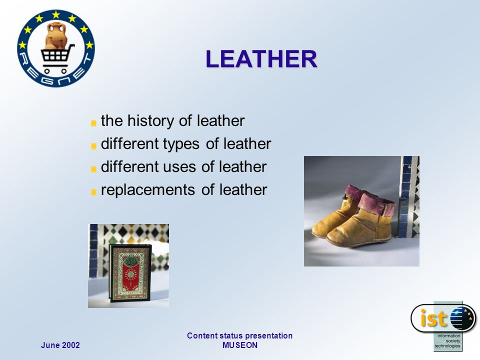 June 2002 Content status presentation MUSEON the history of leather different types of leather different uses of leather replacements of leather LEATHER