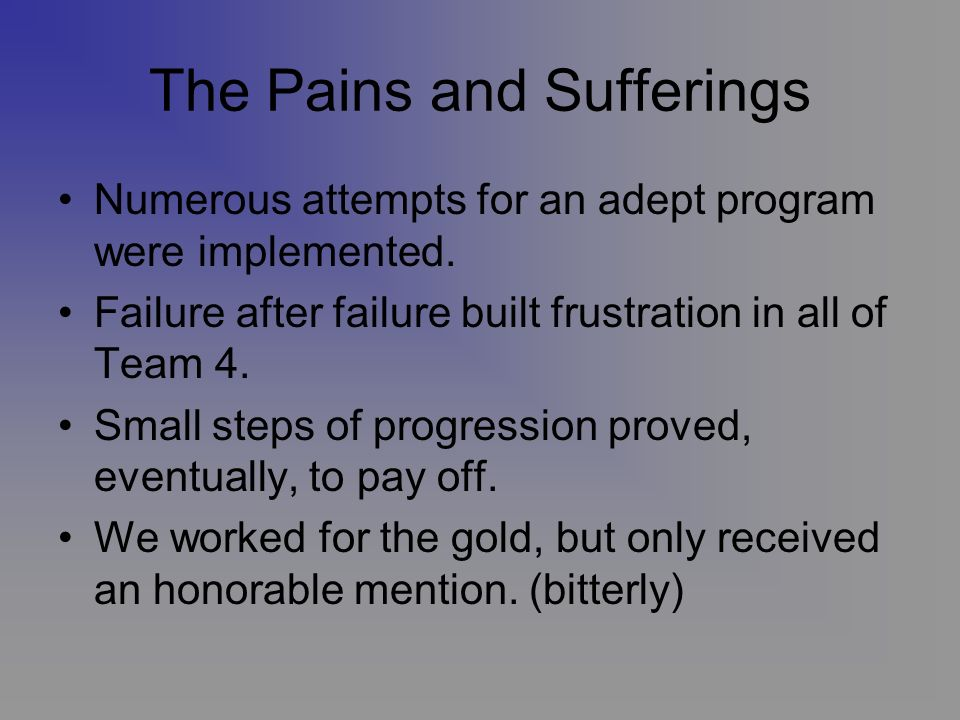 The Pains and Sufferings Numerous attempts for an adept program were implemented.