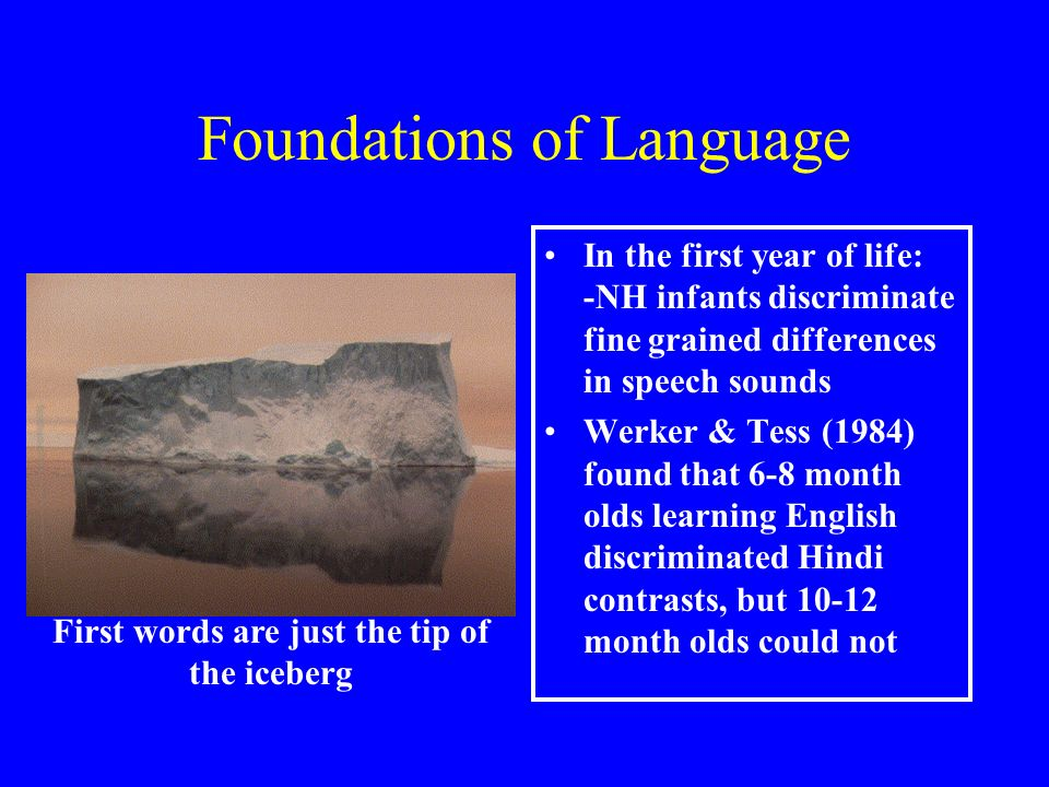 Foundations of Language In the first year of life: -NH infants discriminate fine grained differences in speech sounds Werker & Tess (1984) found that