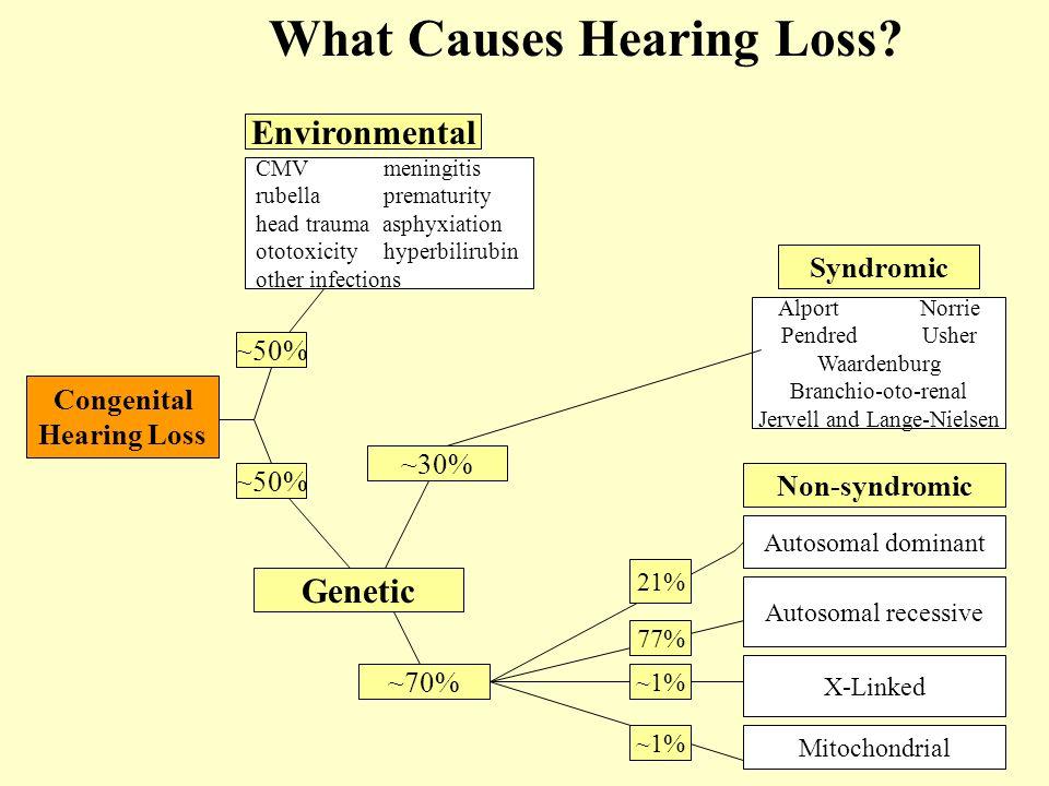 ~50% Environmental Genetic ~70% ~30% CMV meningitis rubella prematurity head trauma asphyxiation ototoxicity hyperbilirubin other infections Syndromic