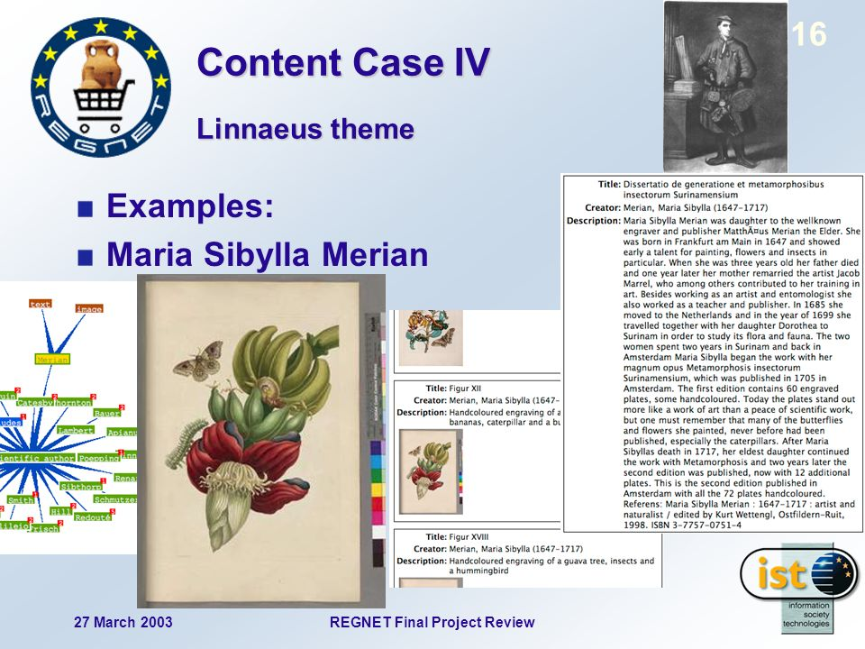 27 March 2003REGNET Final Project Review 16 Examples: Maria Sibylla Merian Linnaeus theme Content Case IV