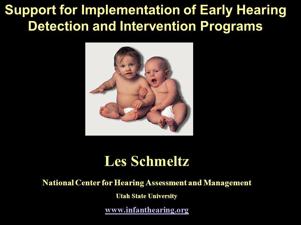 Support for Implementation of Early Hearing Detection and Intervention Programs Les Schmeltz National Center for Hearing Assessment and Management Utah State University